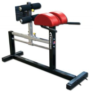 Glute Hamstring Development GHD Bench